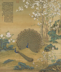 Qing Dynasty – Peacock Spreading Its Feather by Castiglione (Lang Shining) 清朝 – 孔雀开屏图